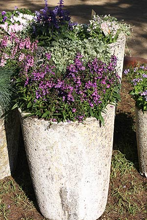 Large Rustic Garden Pot